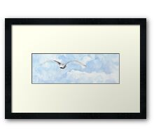 quest... Framed Print