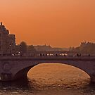 Sunset over the Seine. by naranzaria