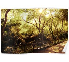 Sunlight - Conservatory Garden - Central Park - New York City Poster