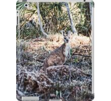 Euro's - Millstream - Chichester National Park iPad Case/Skin