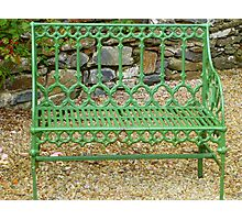 The Green Garden Seat Photographic Print