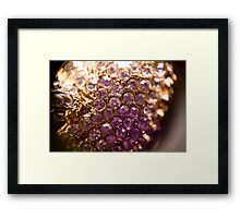 Diamonds and Gold SuperMacro 3 Framed Print