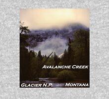 Avalanche Creek, Glacier N.P., Montana Unisex T-Shirt