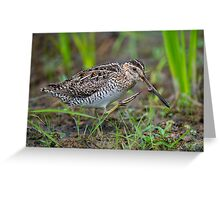 Successful Snipe Hunt Greeting Card
