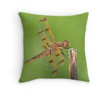Painted Skimmer Throw Pillow