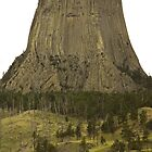 Devil's Tower by mamasita