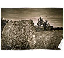 Harvest 2 Poster