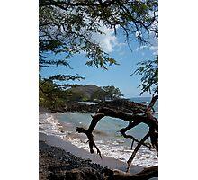Maui Shoreline  Photographic Print