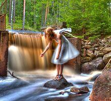 The eternal purification dam – Den eviga rening dammen by João Figueiredo