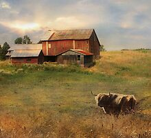 Northumberland County Farm by Lori Deiter