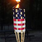 USA  A Torch in the Night by Sandra Lee Woods