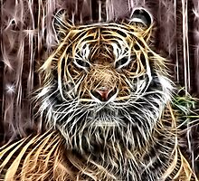 Wild nature - tiger #2 by Wiedzminka