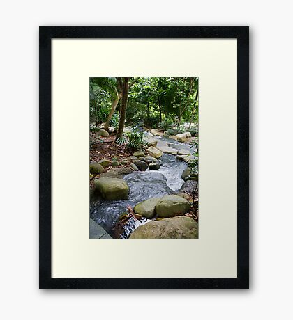 Singapore Botanical Gardens Framed Print