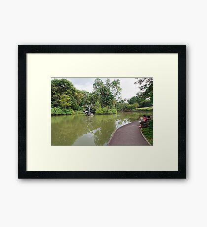 Singapore Botanical Gardens 2 Framed Print