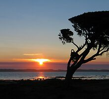Coorong National Park, South Australia by greenspirit
