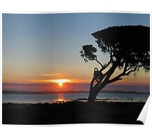 Coorong National Park, South Australia Poster