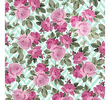 Stylish vintage pink green roses floral chevron  Photographic Print