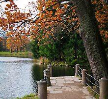 The Catherine Park, Pushkin Tsarskoe Selo, Saint-Petersburg, Russia by torishaa