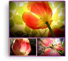 tulips tulips Canvas Print