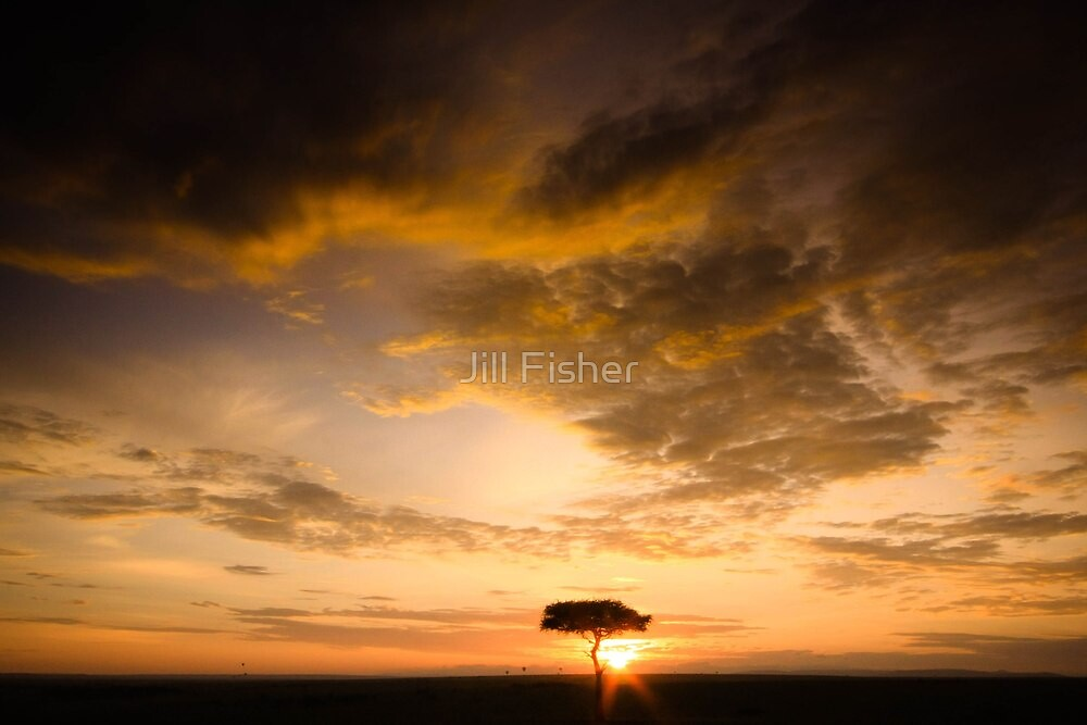 Alone in the Golden Light by Jill Fisher