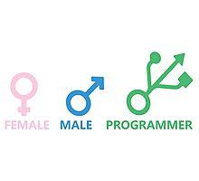 Female, Male, Programmer Photographic Print