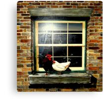 A rooster & hen on a window Ledge Canvas Print
