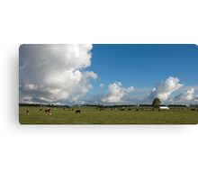 Clouds & Cows Canvas Print