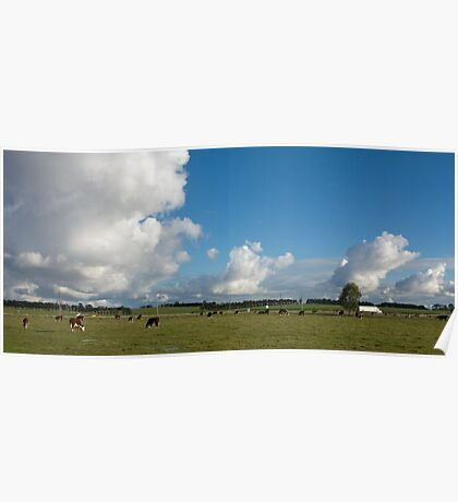 Clouds & Cows Poster