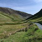 Road through Honister Pass by Marilyn Harris