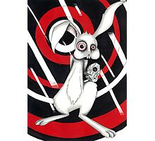 Angry Rabbit Photographic Print
