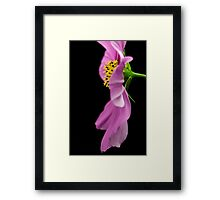 Macro Flower - Up Close and Personal 3 Framed Print