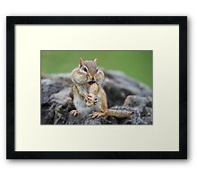 Oh yes I can! Framed Print