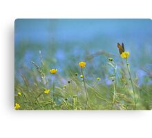 The Butterfly and the Buttercup Canvas Print