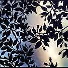 Leaves by rossco
