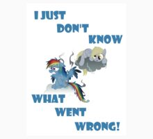 Derpy's gonna Derp - Poor Rainbow Dash by just4lolzz