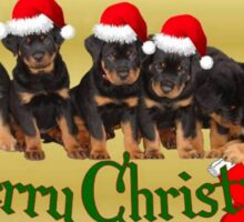 Cute Merry Christmas Rottweiler Puppies Sticker