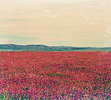 Fields of Heaven by wwyz