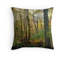 Autumn in the Pennsylvania Woodland - Green Lane Throw Pillow