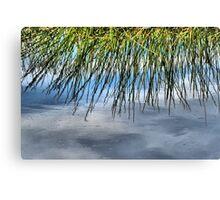 Rush Reflections Canvas Print