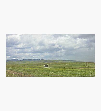 Verdant Hills Photographic Print
