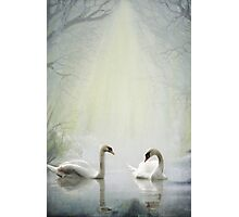 Tranquillity Photographic Print