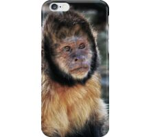 Cute Monkey iPhone Case/Skin
