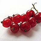 Red currant by bubblehex08