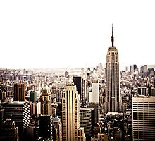 The New York City Skyline and the Empire State Building by Vivienne Gucwa