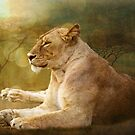 Lioness textured by Linda Sparks