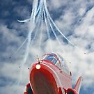 THE RED ARROWS 2015 SEASON - THROUGH THE LENS!   by Colin  Williams Photography