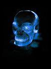 Skull by Lissywitch