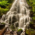 Fairy Falls - 1 by doctorphoto