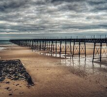 Queens Pier and the Winter Coastline by Sammie Caine