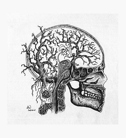 the brain tree Photographic Print